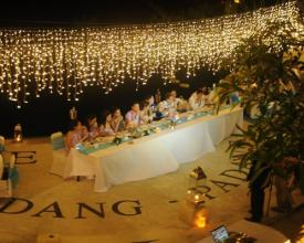 Fairy Light dinner reception